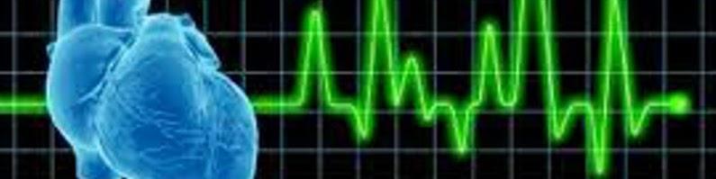 Web 心臓病